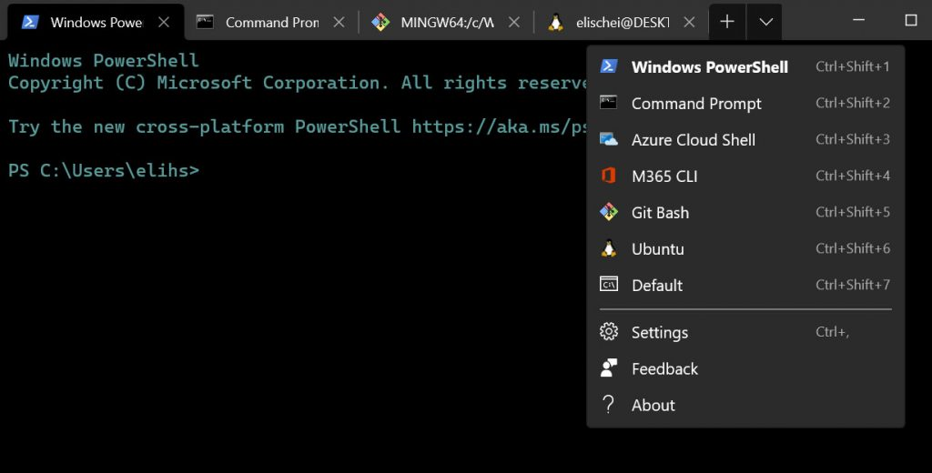 How to create multiple profiles for windows terminal, the image shows an example of different tabs with different profiles.